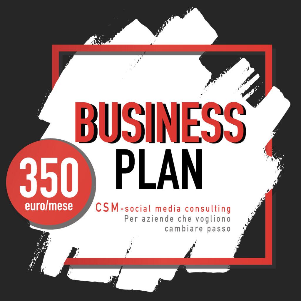 CSM Business plan logo